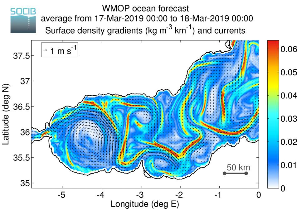 WMOP Ocean Forecast